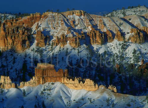 Bryce Canyon and Snow