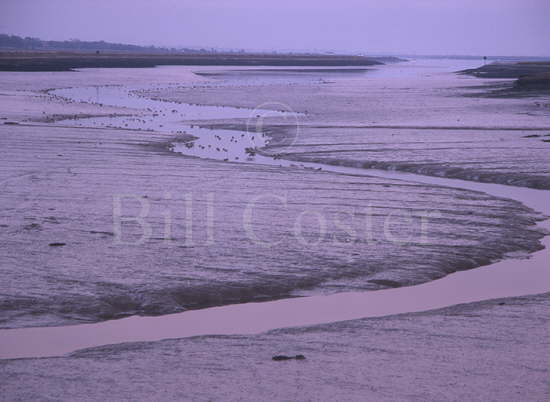 River Crouch Mudflats