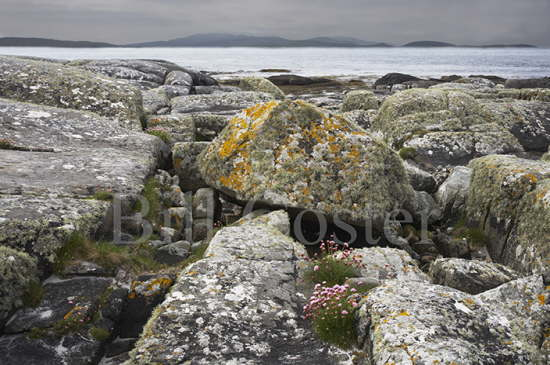 South Uist Coastline