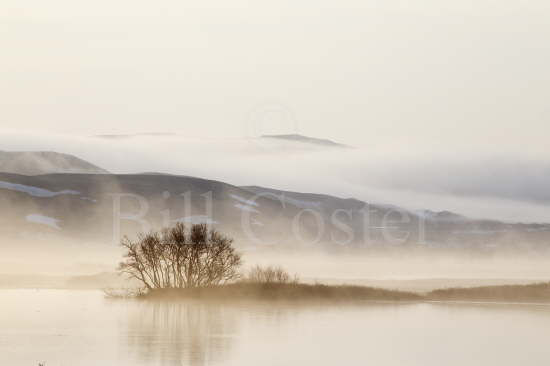 Lake Myvatn Misty Morning